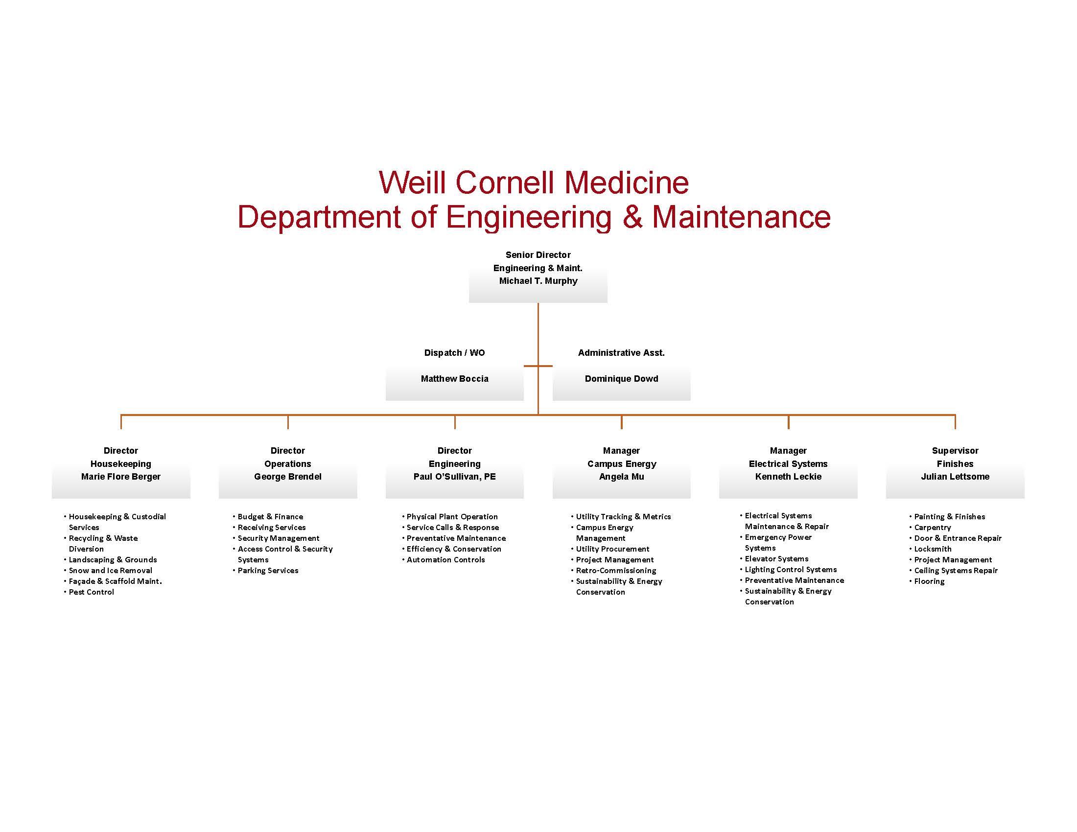 Org Chart E&M